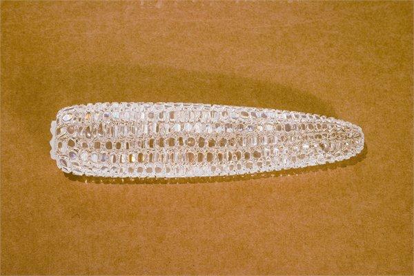 Mircea Cantor, Diamond Corn / 2005